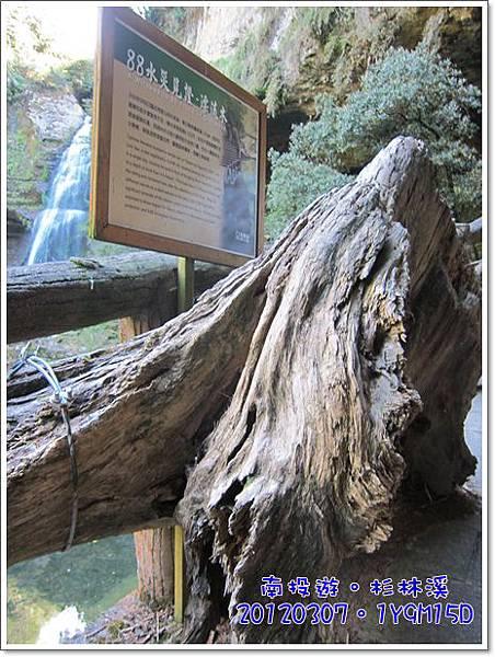20120307-47-松瀧瀑布88水災漂流木