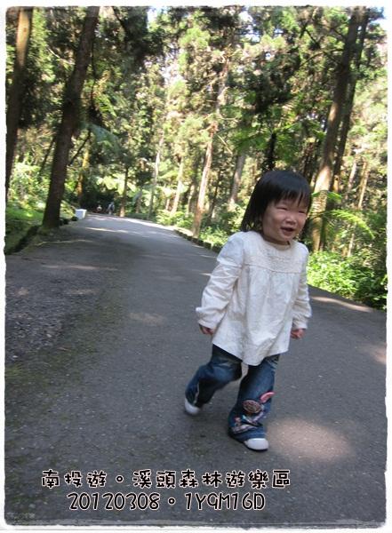 20120308-15-溪頭森林遊樂區