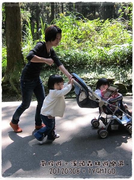 20120308-17-溪頭森林遊樂區