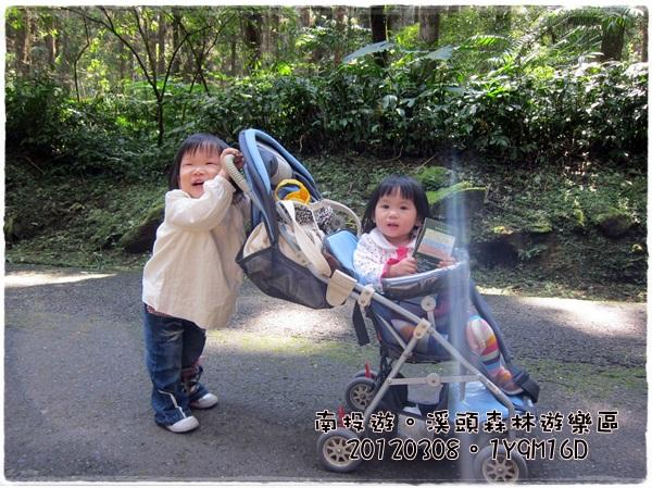 20120308-18-溪頭森林遊樂區