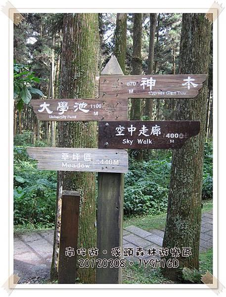 20120308-21-溪頭森林遊樂區