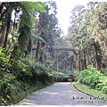 20120308-24-溪頭森林遊樂區-空中走廊