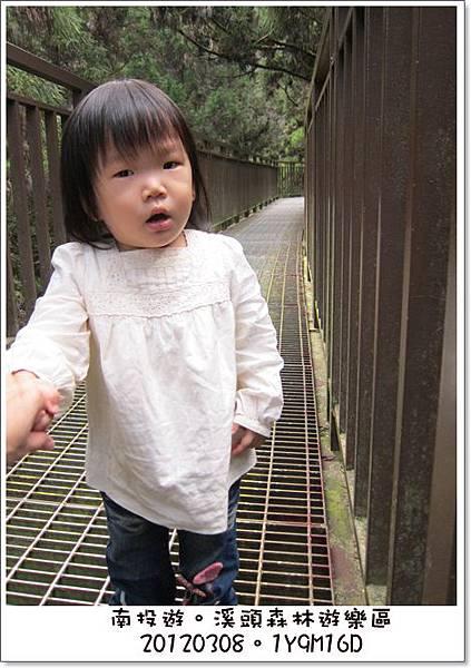 20120308-43-溪頭森林遊樂區-空中走廊