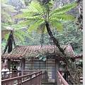 20120308-46-溪頭森林遊樂區-空中走廊