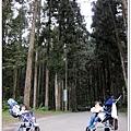 20120308-49-溪頭森林遊樂區