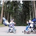 20120308-50-溪頭森林遊樂區