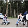 20120308-51-溪頭森林遊樂區
