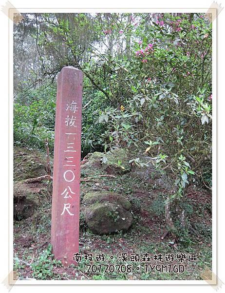 20120308-52-溪頭森林遊樂區