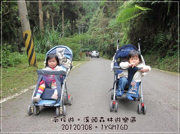 20120308-53-溪頭森林遊樂區-好大的斜坡