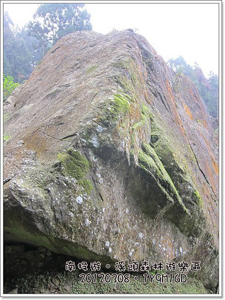 20120308-65-溪頭森林遊樂區-巨石