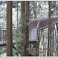 20120308-76-溪頭森林遊樂區