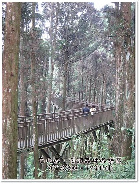 20120308-77-溪頭森林遊樂區