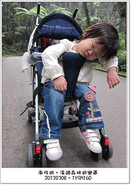20120308-79-溪頭森林遊樂區
