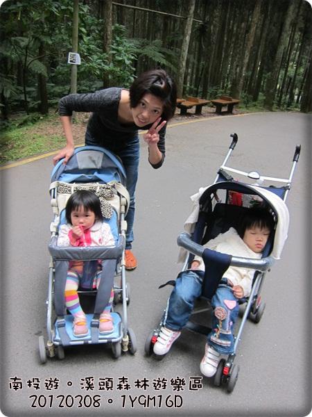 20120308-81-溪頭森林遊樂區