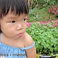 20120318-7-內湖採草莓