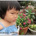 20120318-8-內湖採草莓