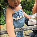 20120318-10-內湖採草莓