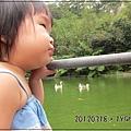 20120318-11-內湖採草莓