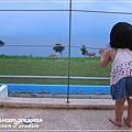 Ocean Paradise-海境-26-綠野