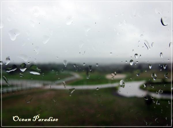 Ocean Paradise-海境-69-綠野雨景