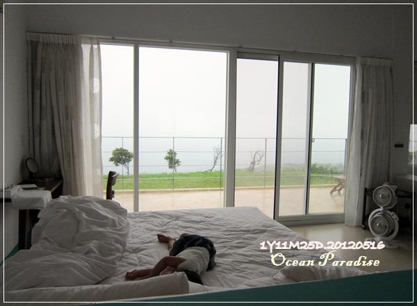 Ocean Paradise-海境-75-綠野