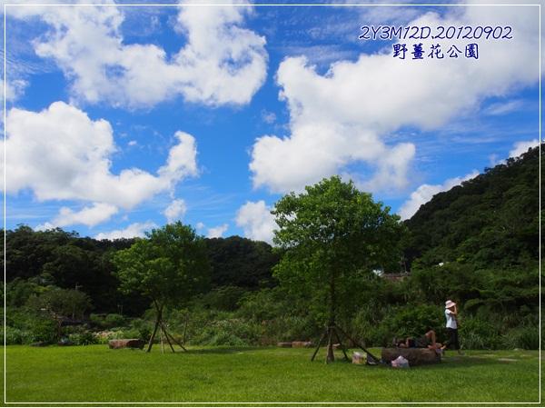 野薑花公園-1