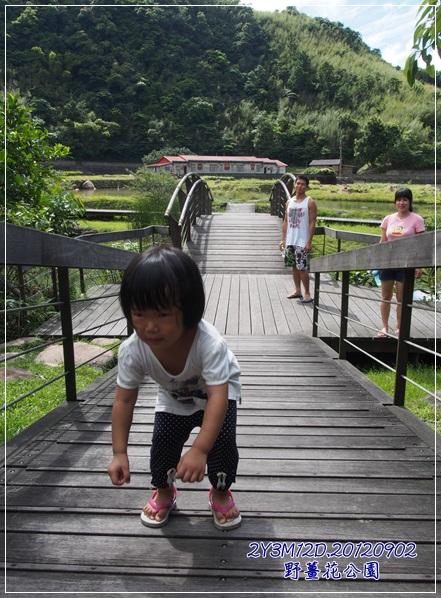 野薑花公園-15