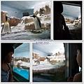 動物園-7
