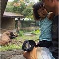 動物園-10