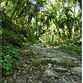 20121014松羅步道-18