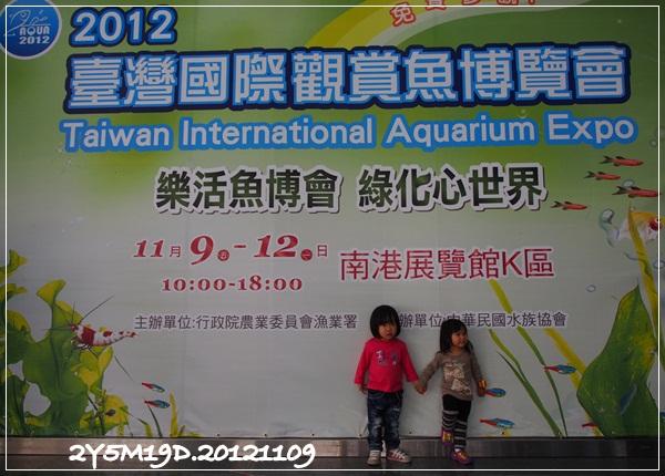 觀賞魚博覽會-20121109-2