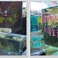 觀賞魚博覽會-20121109-20