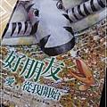 斑馬花花-5
