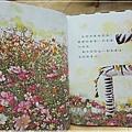 斑馬花花-7