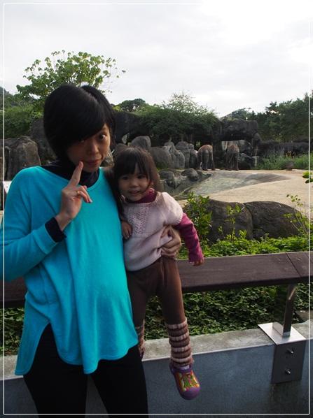 20120111-動物園-9