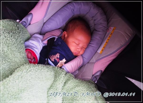 20120111-動物園-13