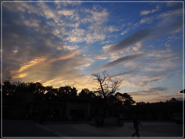 20120111-動物園-16