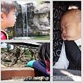 20130308-台北動物園-7