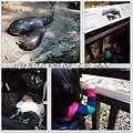 20130308-台北動物園-12