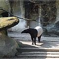 20130308-台北動物園-13