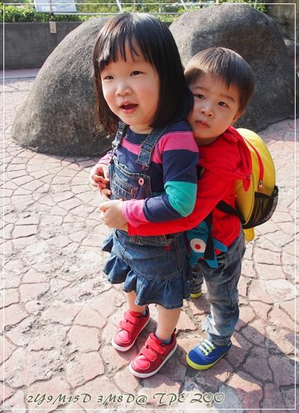 20130308-台北動物園-22