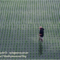 20130328-宜蘭調色盤築夢會館-24