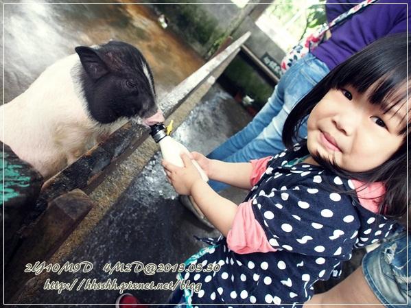 20130330-宜農牧場-11