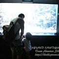 subic trip-20130723-2-OCEAN ADVENTURE.jpg