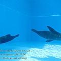 subic trip-20130723-8-OCEAN ADVENTURE.jpg