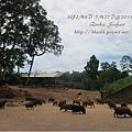 subic trip-20130725-25-zoobic safari.jpg
