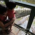 subic trip-20130725-33-zoobic safari.jpg