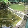 subic trip-20130725-34-zoobic safari.jpg
