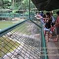 subic trip-20130725-35-zoobic safari.jpg