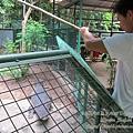 subic trip-20130725-36-zoobic safari.jpg